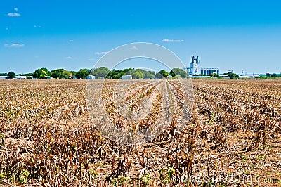 Drought on the Farm