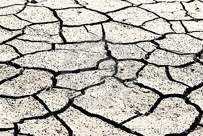 Drought land was cracked.