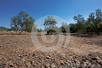 Drought in the Outback