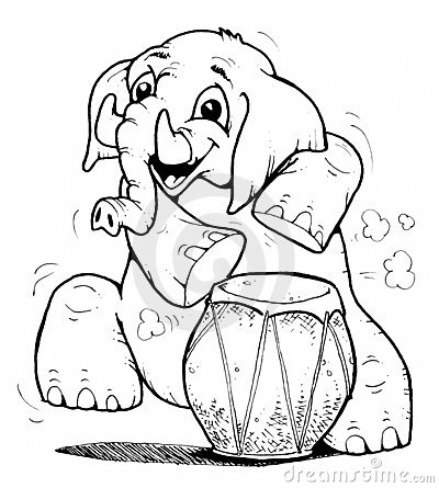 Drum  n  elephant