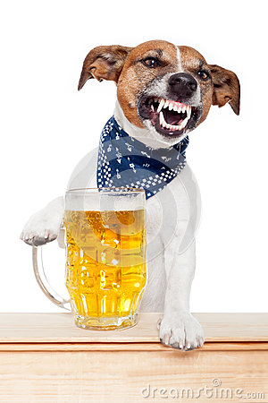 Free Drunk Dog With Beer Stock Photos - 25092873