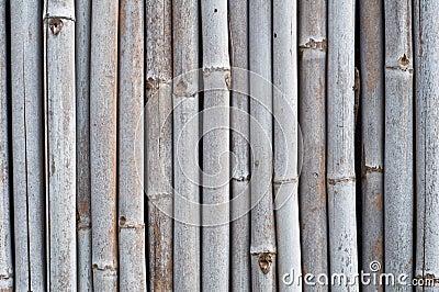 Dry bamboo wall