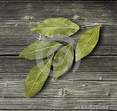 Free Dry Bay Leaf Royalty Free Stock Photography - 67491087
