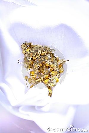 Dry chamomile tea