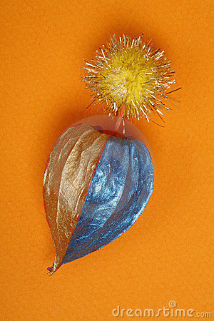 Dry chinese lantern fruit