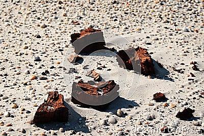 Dry clay sand