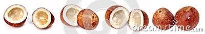 Dry coconut halves