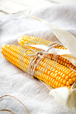 Free Dry Corn Cobs Royalty Free Stock Image - 65993906