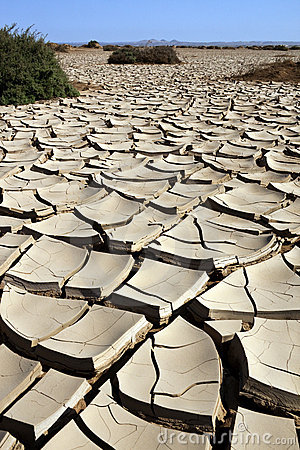 Free Dry Cracked Earth - Namibia Royalty Free Stock Photo - 23186015