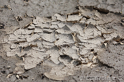 Dry cracked land