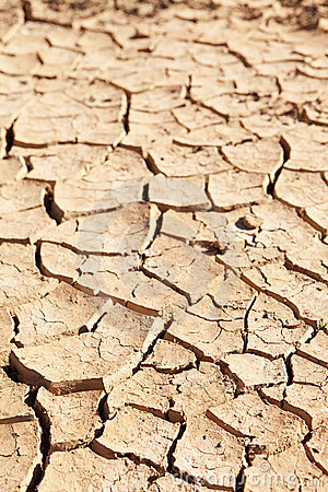 Free Dry Cracked Mud In Dried Up Waterhole Stock Photography - 16707162