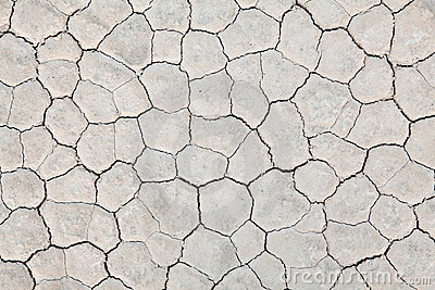 Dry earth background