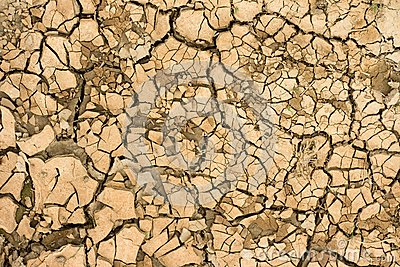 Dry ground