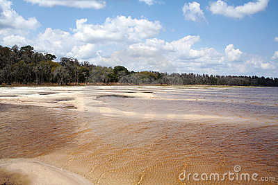 Dry lake in a Central Flodida State park