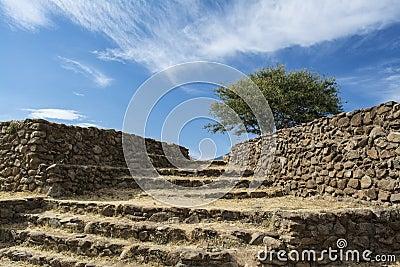 Guadalajara, Jalisco, Mexico Dry Landscape