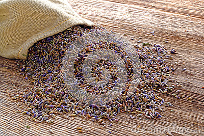 Dry Lavender Seeds and Burlap Bag over Old Wood