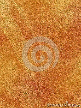 Dry leaf textured
