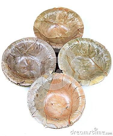 Dry leaves bowl