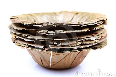 Dry leaves bowl
