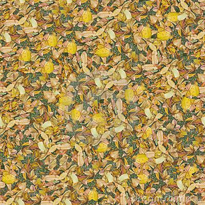 Dry leaves seamlessly composable pattern