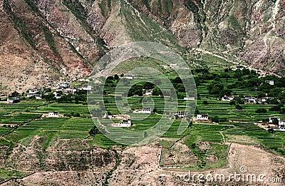 Dry mountain oasis