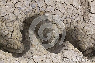 Dry mud texture 01