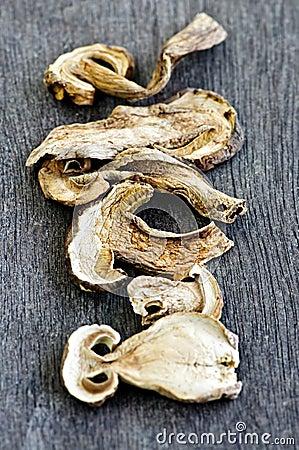 Dry porcini mushrooms