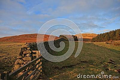 Dry Stone Wall, Northumberland, England