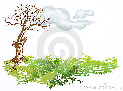 Dry tree with cloud