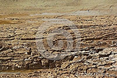 Drying lake