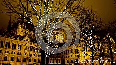 Drzewa ozdobne ze złotym wieńcem na ulicy miejskiej w tle parlamentu zbiory wideo