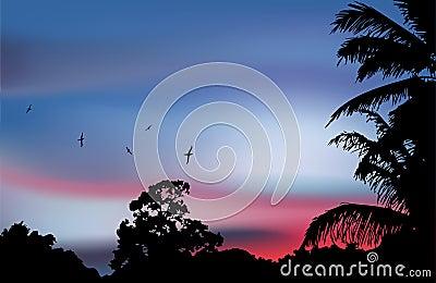 Drzewko palmowe sylwetka na raju zmierzchu. Wektor