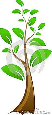 Drzewo mały wektor