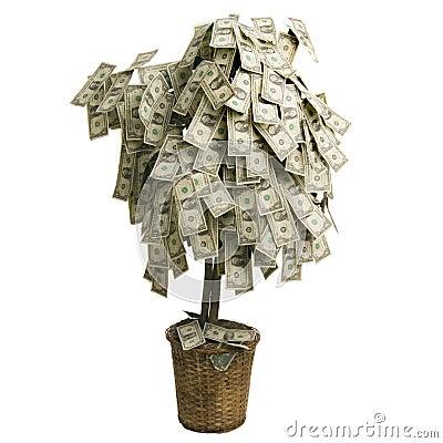 Drzewo pieniądze