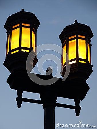 Dual Lamp Streetlight