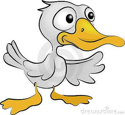 Free Duck Stock Images - 2340944