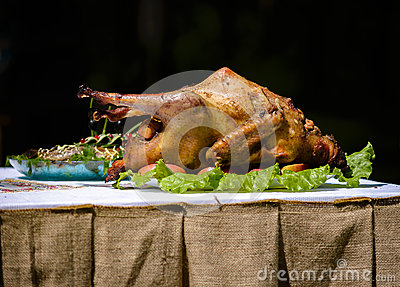 Duck cooked with apples on the table Stock Photo