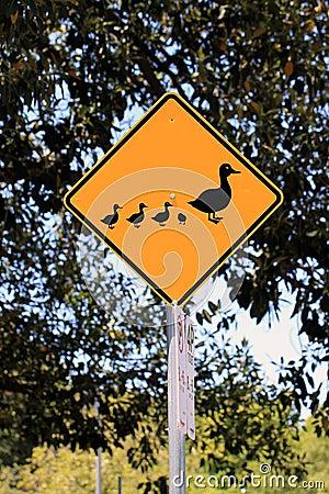 Duck Crossing Warning Road Sign