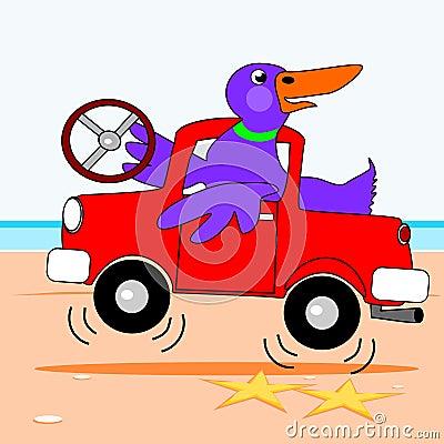 Duck driving a truck