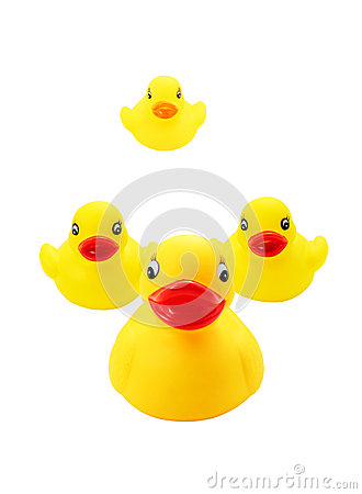 Duck family of toy
