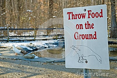 Duck and Geese Feeding Sign