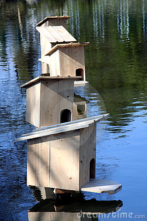 Free Duck Home Stock Images - 13872064
