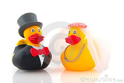 Duck marriage