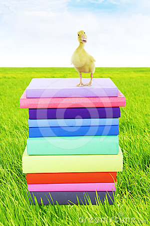 Duck standing on stack of books