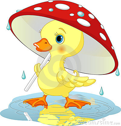 Duck under rain