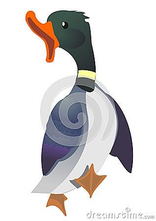 Duck walking with open beak