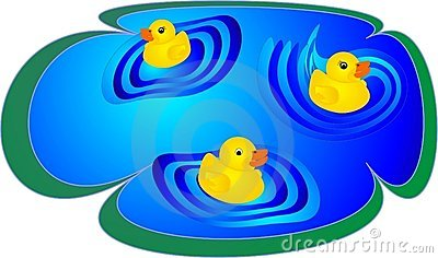 Ducklings having fun