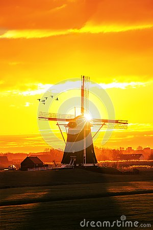 Free Ducks Fying Over A Beautiful Early Morning And Warm Kinderdijk S Stock Photo - 129587590