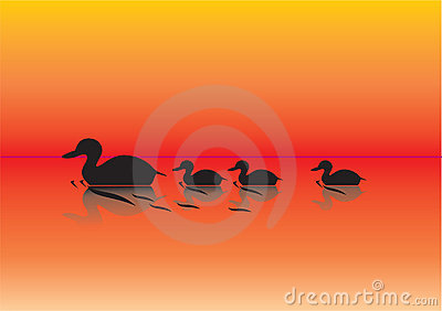 Ducks on a pond illustration