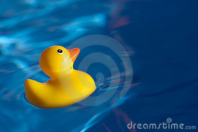 Ducky резина